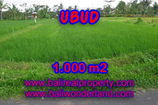 Astounding Property in Bali, Land in Ubud Bali for sale – 1.000 m2 @ $ 120