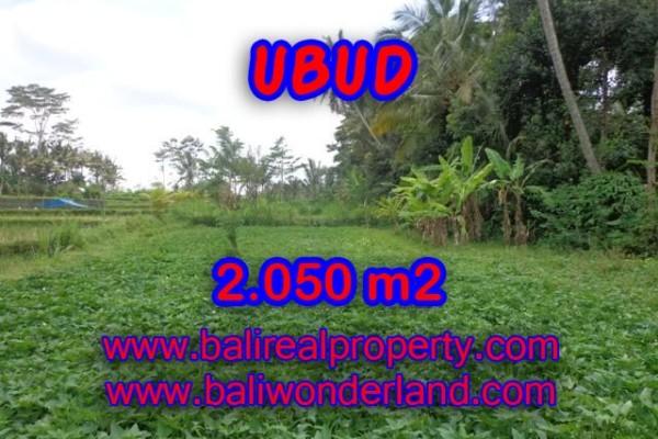 Astonishing Property in Bali, Land for sale in Ubud Bali – 2.050 m2 @ $ 175