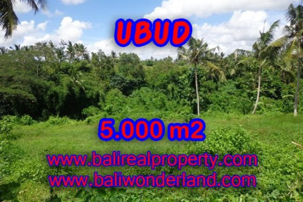 Land for sale in Bali, Fantastic view in Ubud Bali – 5.000 m2 @ $ 335
