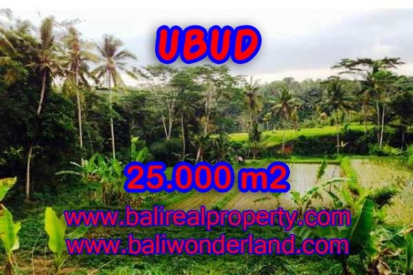 Extraordinary Property in Bali, Land for sale in Ubud Bali – 25.000 m2 @ $ 500
