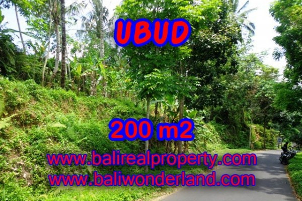 Land for sale in Bali, Interesting view in Ubud Bali – 200 m2 @ $ 165