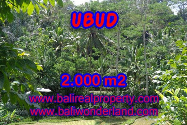 Land in Ubud for sale, Outstanding view in Ubud Tegalalang Bali – TJUB359