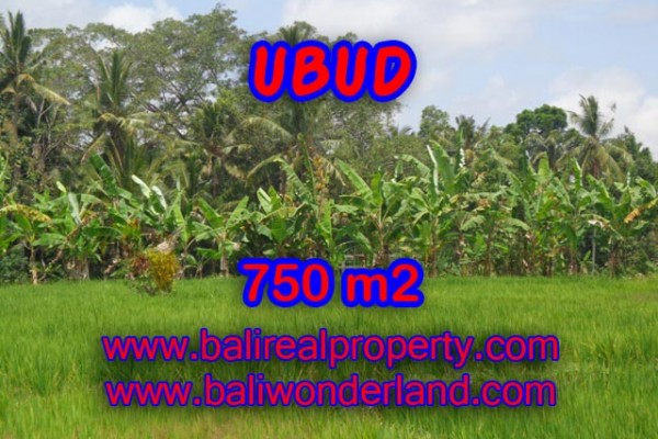 Land for sale in Bali, Fantastic view in Ubud Bali – 750 m2 @ $ 215