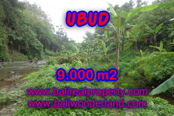 Land for sale in Bali, Outstanding property in Ubud Bali – 9.000 m2 @ $ 235