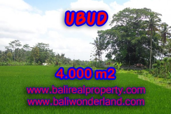 Magnificent Property in Bali, Land for sale in Ubud Bali – 4.000 m2 @ $ 85