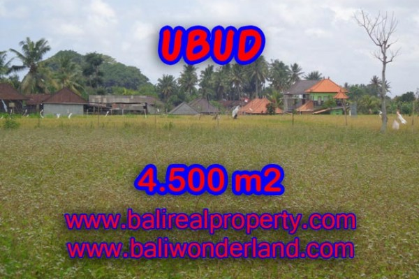 Land in Bali for sale, Stunning Property in Ubud Bali – 4.500 m2 @ $ 295