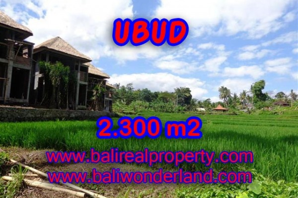 Land for sale in Bali, Exceptional view in Ubud Bali – 2.300 m2 @ $ 427