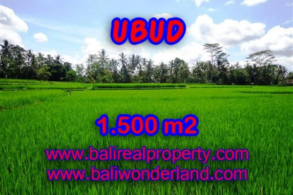 Attractive Property for sale in Bali, Ubud land for sale – 1.500 m2 @ $ 375