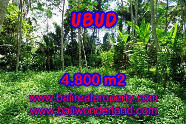 Astounding Property in Bali, Land in Ubud Bali for sale – 4.800 m2 @ $ 75