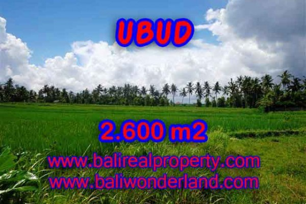 Excellent Property for sale in Bali, land for sale in Ubud Bali – 2.600 m2 @ $ 195