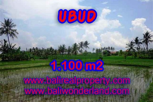 Terrific Property for sale in Bali, LAND FOR SALE IN UBUD Bali  – 1.100 m2 @ $ 265