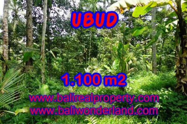 Extraordinary Property for sale in Bali, land for sale in Ubud Bali – 1.100 m2 @ $ 145