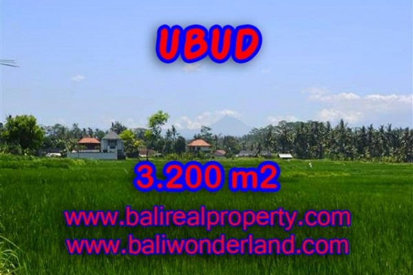 Magnificent Property in Bali, Land for sale in Ubud Bali – 3.200 m2 @ $ 325