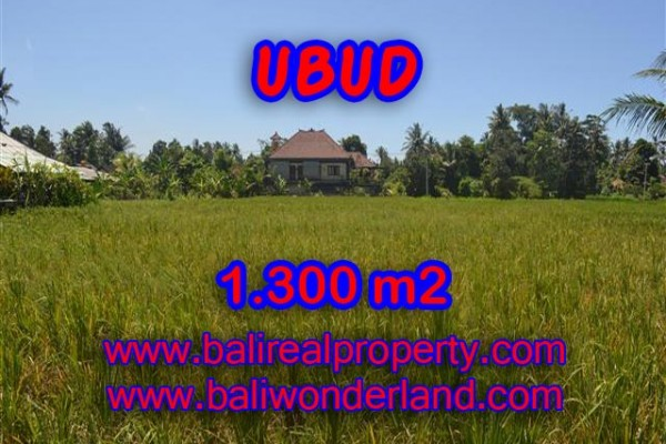 Exceptional Property in Bali, Land in Ubud Bali for sale – 1.300 m2 @ $ 265