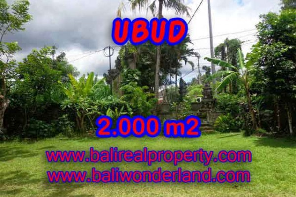 Land for sale in Bali, Outstanding view in Ubud Bali – 2.000 m2 @ $ 435
