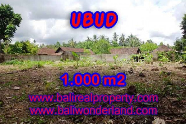 Property in Bali for sale, Beautiful LAND FOR SALE IN UBUD Bali – 1.000 m2 @ $ 485