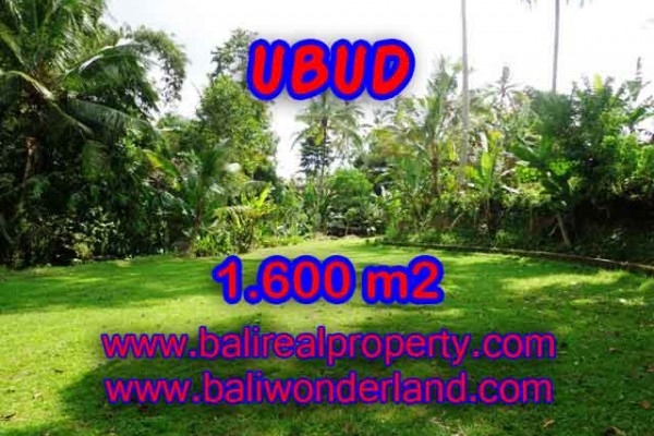 Exceptional Property in Bali, Land in Ubud Bali for sale – 1.600 m2 @ $ 385
