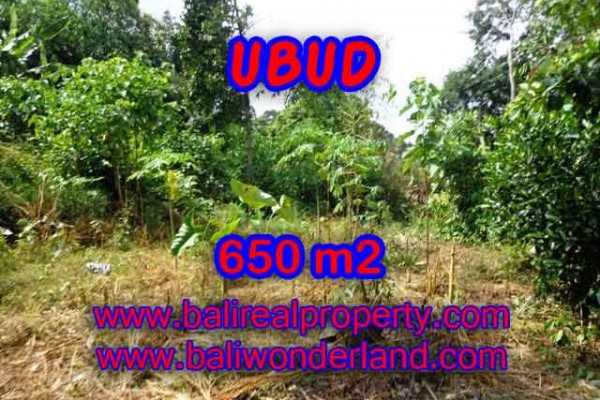 Exotic Property for sale in Bali, Land in Ubud for sale– 650 m2 @ $ 395