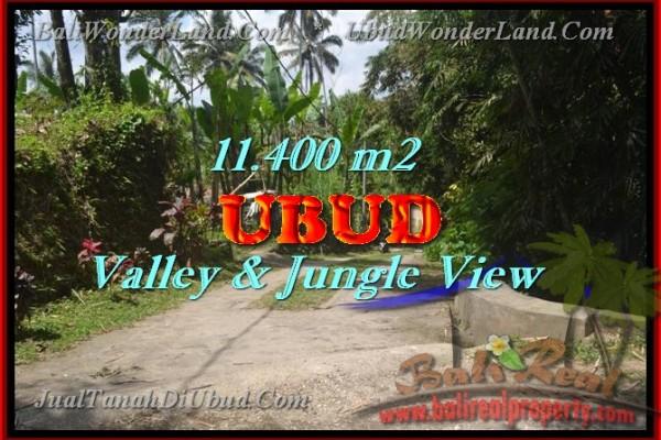 Splendid Property for sale in Bali, LAND FOR SALE IN UBUD Bali  – 11.400 m2 @ $ 75