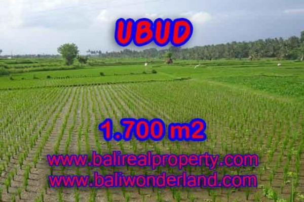 Land in Bali for sale, Stunning Property in Ubud Bali – 1.700 m2 @ $ 150