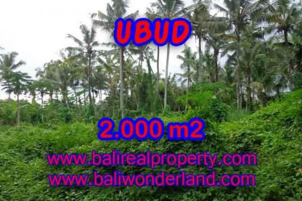 Land for sale in Bali, Outstanding view in Ubud Bali – 2.000 m2 @ $ 285