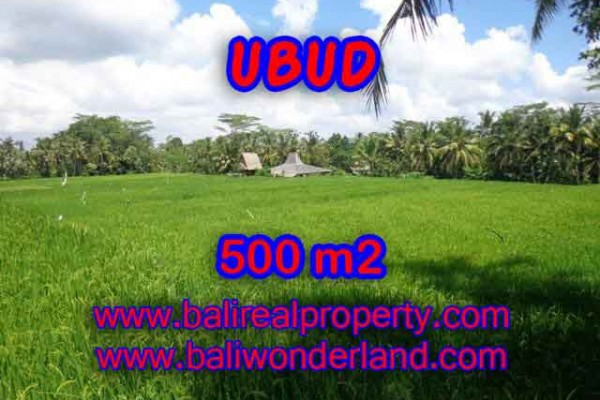 Land in Ubud for sale, Attractive view in Ubud Payangan Bali – TJUB402