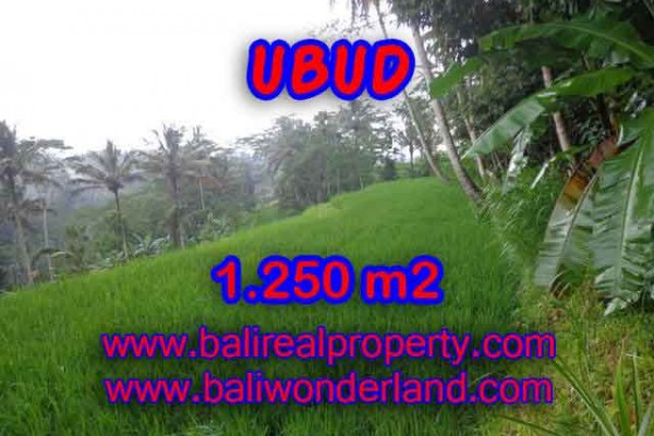 Land for sale in Ubud, Fantastic view in Ubud Tampak siring Bali – TJUB405