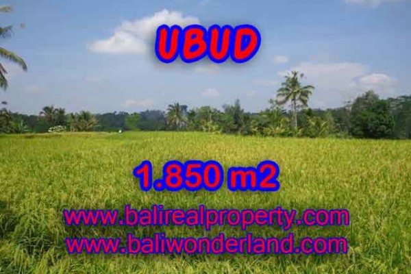 Beautiful Property for sale in Bali, land for sale in Ubud Bali  – 1.850 m2 @ $ 175