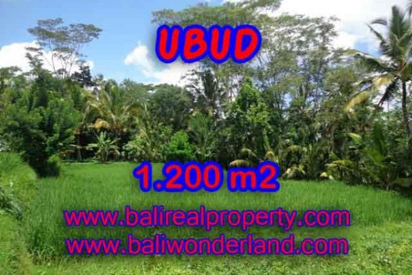 Excellent Property for sale in Bali, land for sale in Ubud Bali  – 1.200 m2 @ $ 120