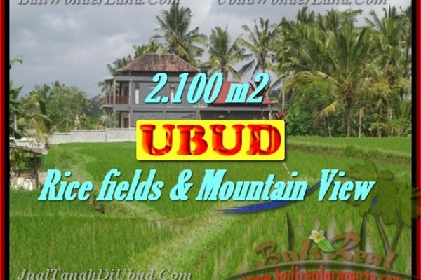 Land in Bali for sale, Great view in Ubud Bali – 2.100 m2 @ $ 195