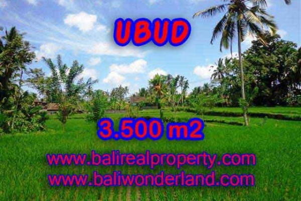 Extraordinary Property in Bali, Land in Ubud for sale – 3.500 m2 @ $ 175