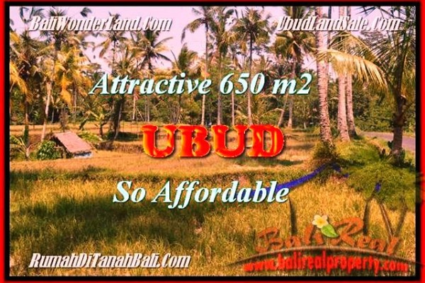 650 m2 LAND FOR SALE IN Ubud Pejeng TJUB455