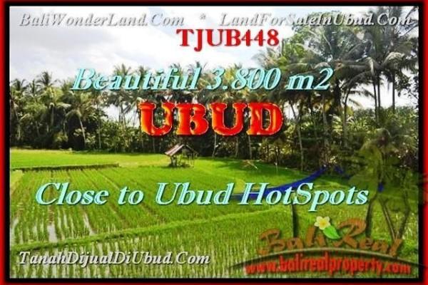 FOR SALE Beautiful 3.800 m2 LAND IN UBUD TJUB448