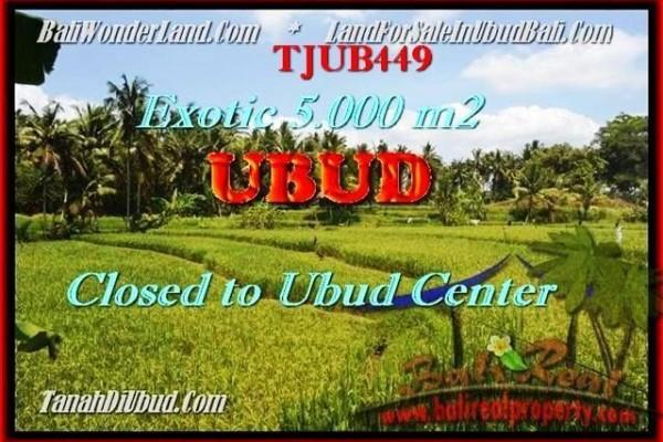 Beautiful PROPERTY LAND SALE IN UBUD BALI TJUB449