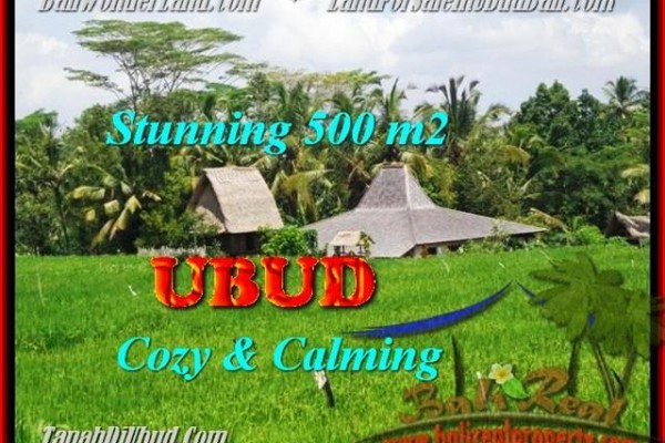 Magnificent PROPERTY 500 m2 LAND SALE IN UBUD TJUB459
