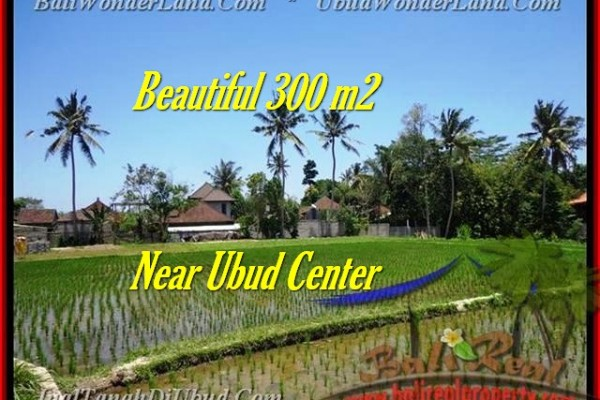 FOR SALE Exotic PROPERTY LAND IN Sentral Ubud BALI TJUB436
