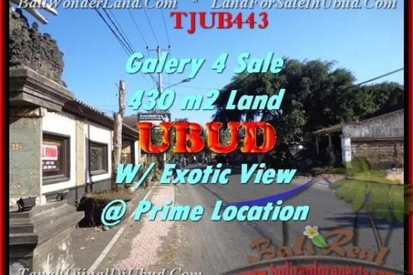 Exotic LAND FOR SALE IN Sentral Ubud BALI TJUB443