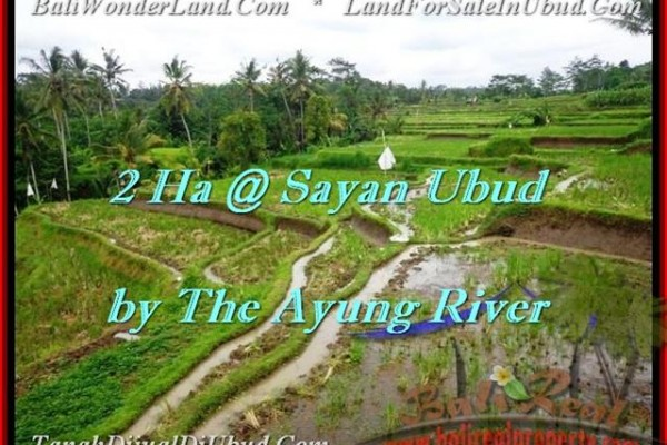 20,000 m2 LAND IN UBUD FOR SALE TJUB473