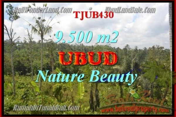 Magnificent PROPERTY 9,500 m2 LAND FOR SALE IN UBUD BALI TJUB430
