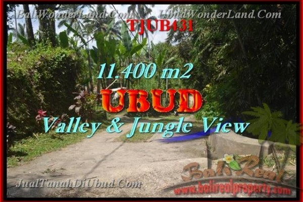 FOR SALE Exotic PROPERTY 11,400 m2 LAND IN UBUD TJUB431