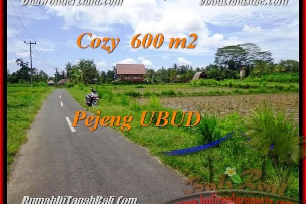 FOR SALE Beautiful PROPERTY 600 m2 LAND IN UBUD BALI TJUB465