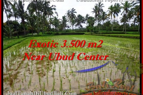 Magnificent 3,500 m2 LAND FOR SALE IN UBUD BALI TJUB477