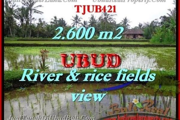 Beautiful PROPERTY UBUD LAND FOR SALE TJUB421