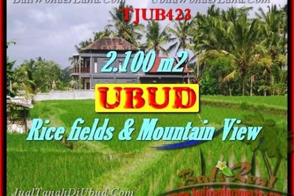 Exotic PROPERTY 2,100 m2 LAND FOR SALE IN UBUD BALI TJUB423