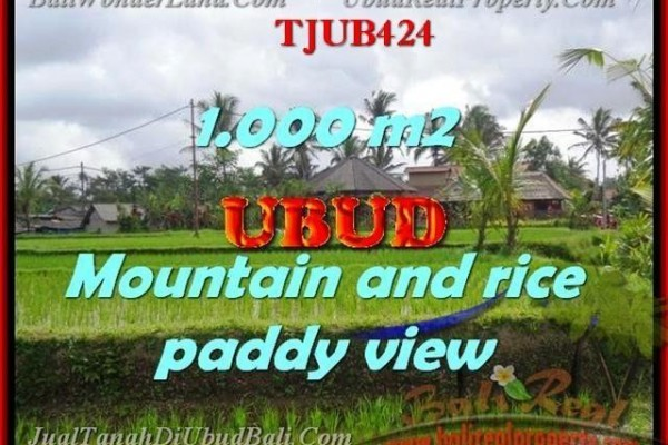 FOR SALE Affordable PROPERTY 1,000 m2 LAND IN UBUD TJUB424