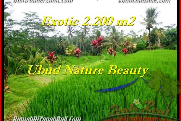 Beautiful PROPERTY 2,200 m2 LAND FOR SALE IN Ubud Tegalalang TJUB480