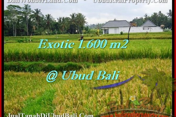 Exotic PROPERTY LAND IN UBUD FOR SALE TJUB487