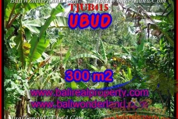 Affordable LAND SALE IN Sentral Ubud TJUB415