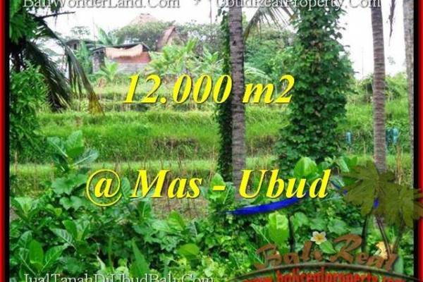 Exotic PROPERTY LAND IN UBUD FOR SALE TJUB492