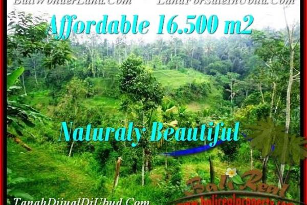 Magnificent PROPERTY UBUD BALI 16,500 m2 LAND FOR SALE TJUB494